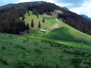 Parcul Natural Putna – Vrancea – România