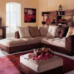 Indian-Living-Room-Furniture_4