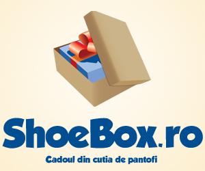 ShoeBox-300X250