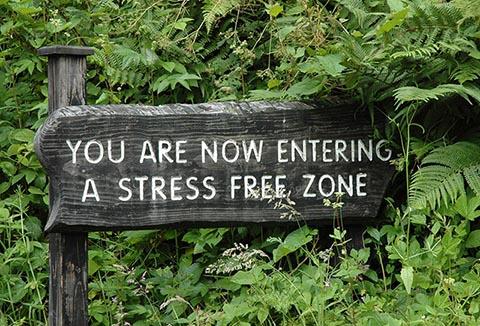 reduce stresul