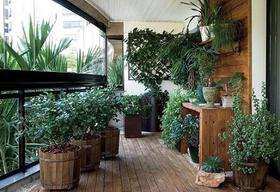 a amenaja ingenios o terasă