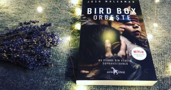 Bird Box Orbește