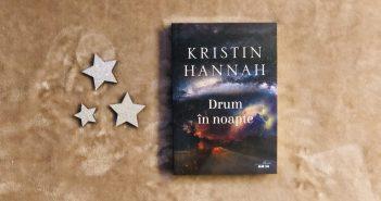 Drum în noapte de Kristin Hannah